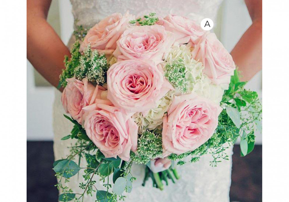 Classic Pink Garden Roses
