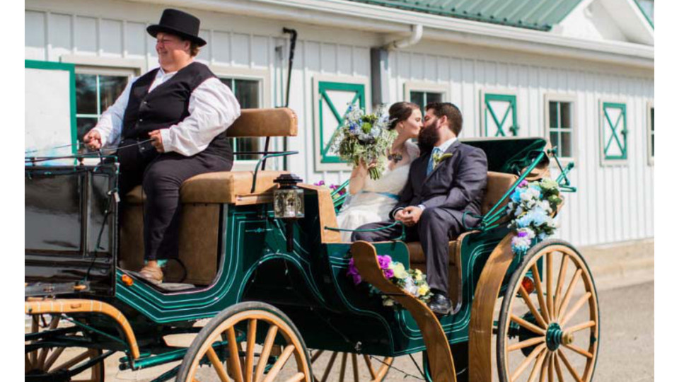 Horse & Carriage Wedding